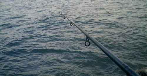 fishingheader