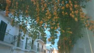 Nerja,White washed houses, charming town