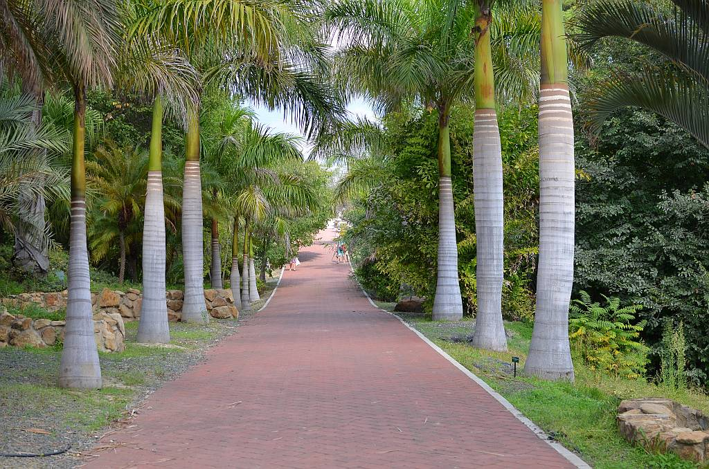 Jard n botanico la concepci n m laga nerja today for Bodas jardin botanico malaga