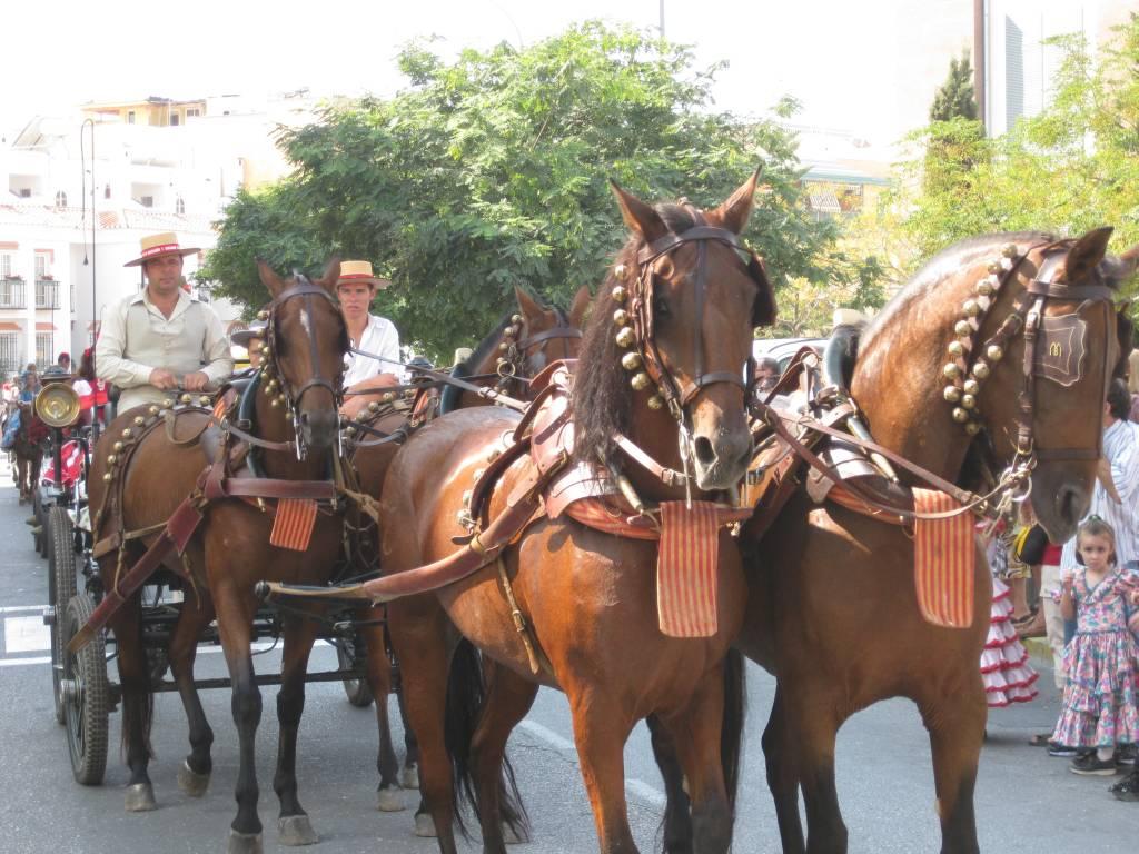 procession23