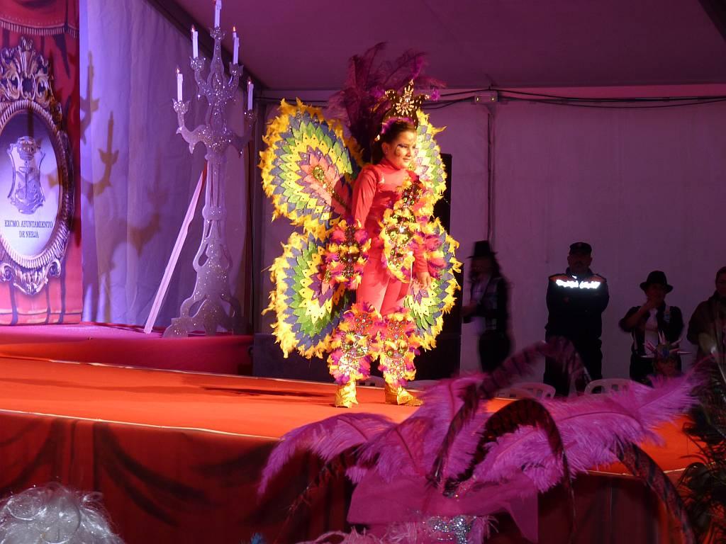 carnival2011e