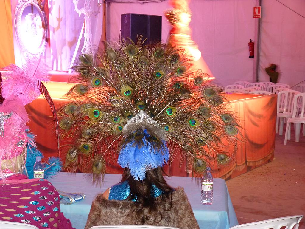 carnival2011o