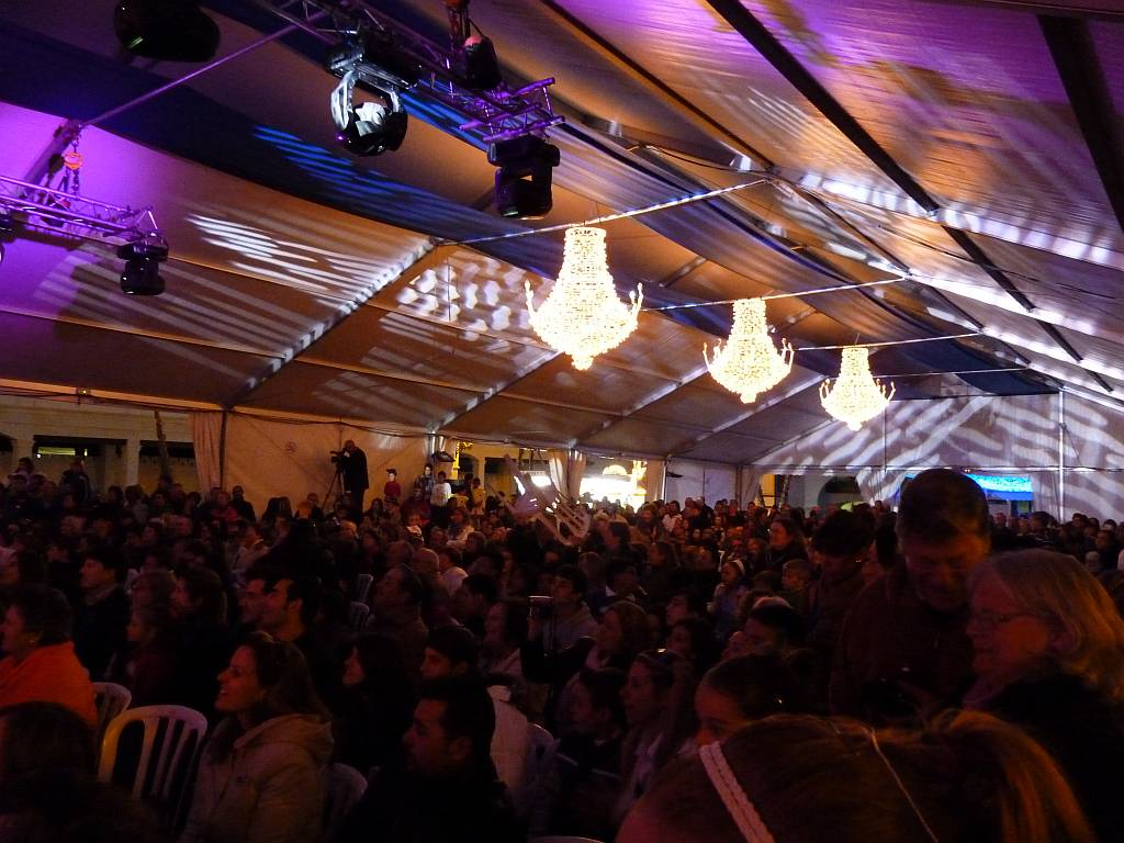 carnival2011tent