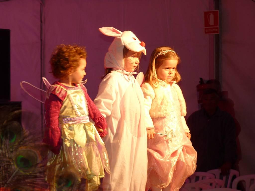 carnival2011u