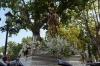 virgen-del-carmen-2012-7
