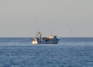 Fishing boat, Calahonda beach, Nerja