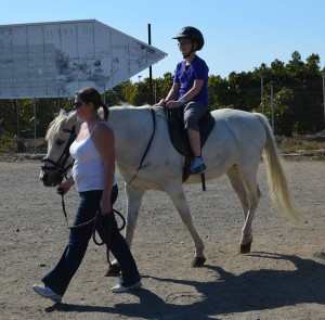 Nerja Donkey Sanctuary Fair