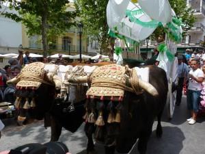 San Isidro 2011, Nerja